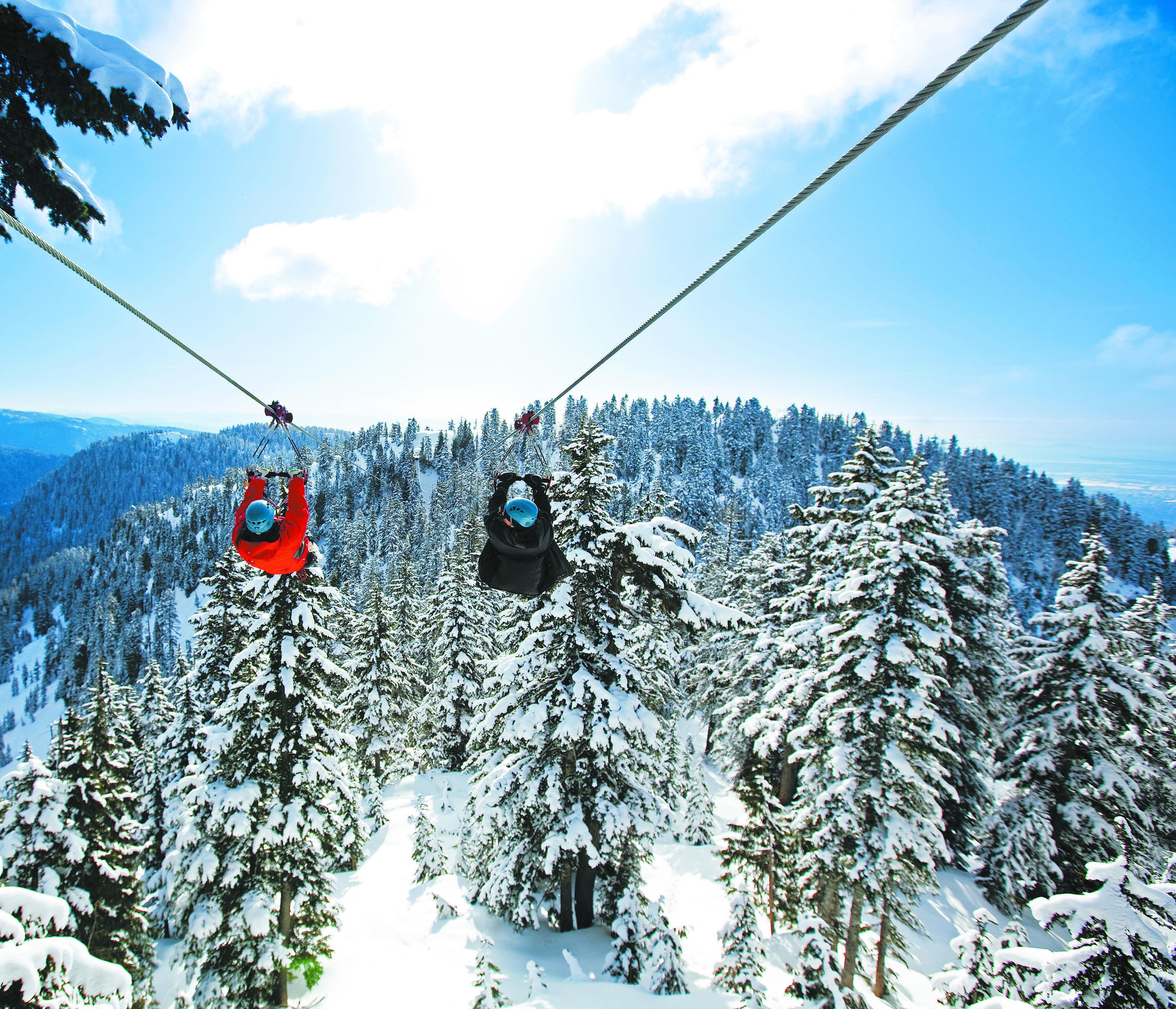 Ziplining In The Snow