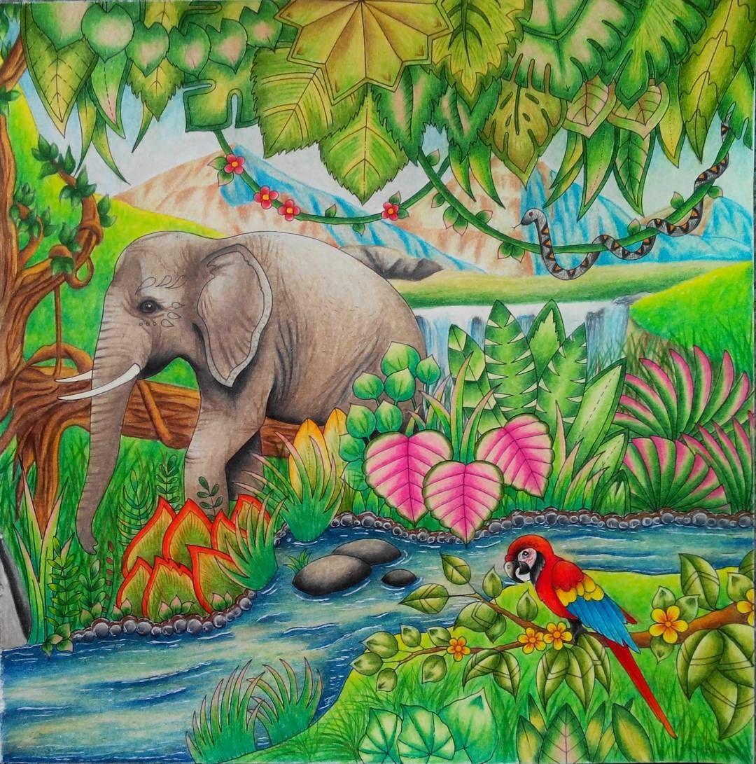 Half Done Elephant Magicaljungle Magicaljunglecoloringbook Johannabasford Joh Magical Jungle Johanna Basford Johanna Basford Coloring Basford Coloring Book