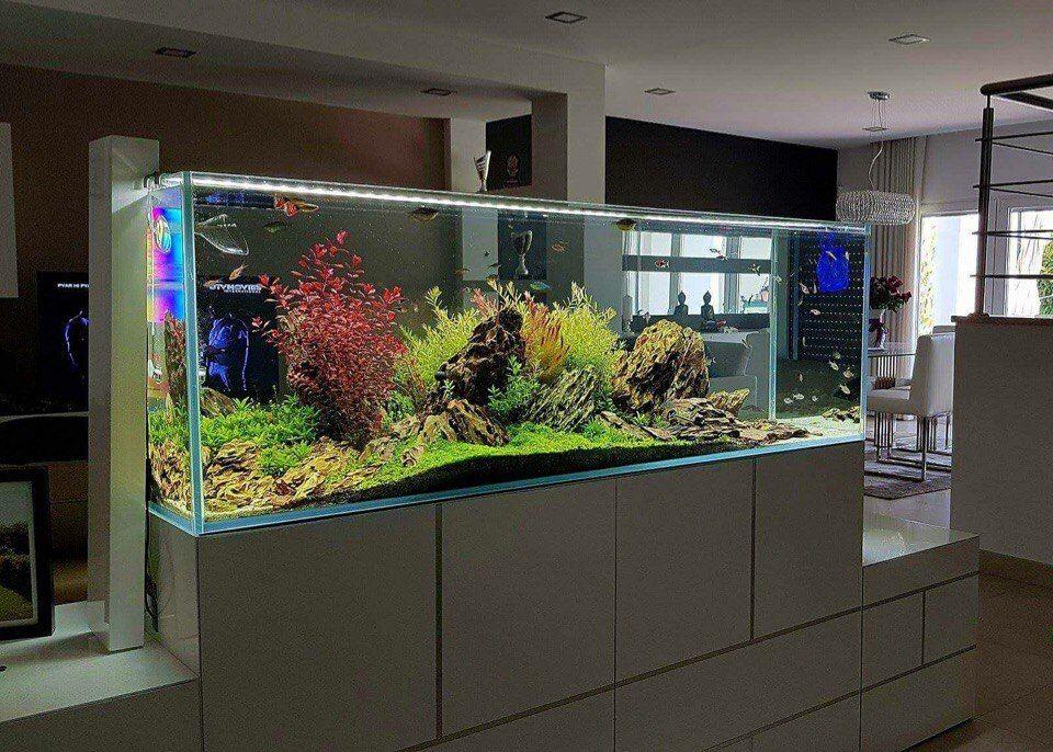 livingroom ideas ideen rund ums haus aquarium. Black Bedroom Furniture Sets. Home Design Ideas
