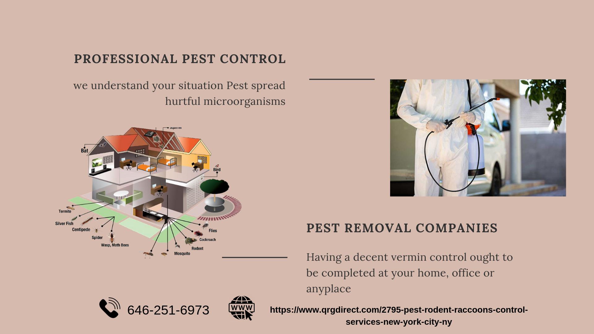 Best Pest Removal Companies New York City NY Pest