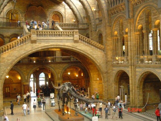 Interior del museo de Historia Natural, Londres