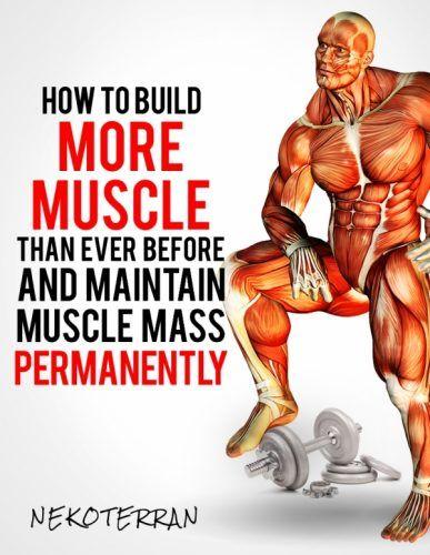 Bodybuilding program muscle mass building strategy blueprint http bodybuilding program muscle mass building strategy blueprint httpfree malvernweather Choice Image
