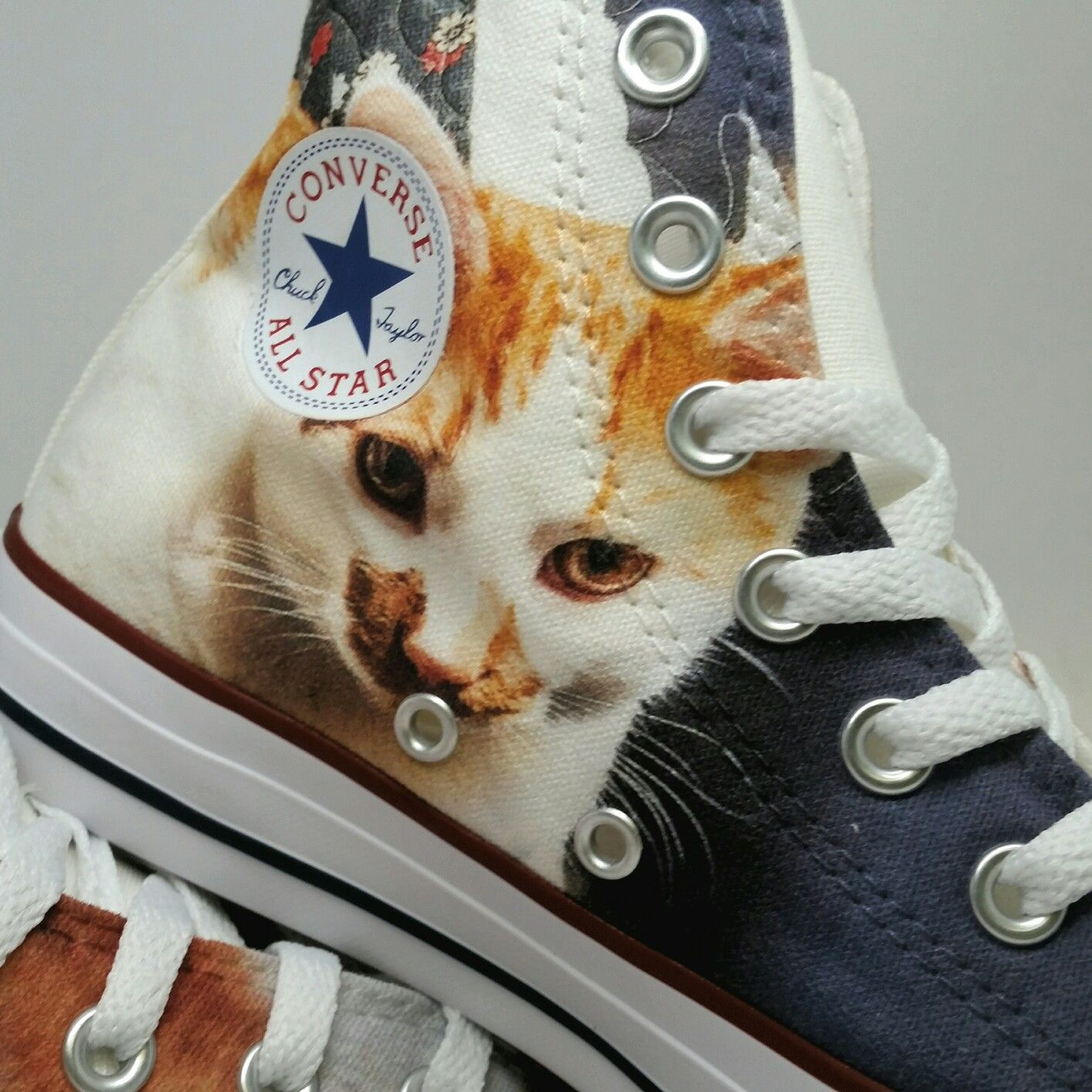 cat converse shoes