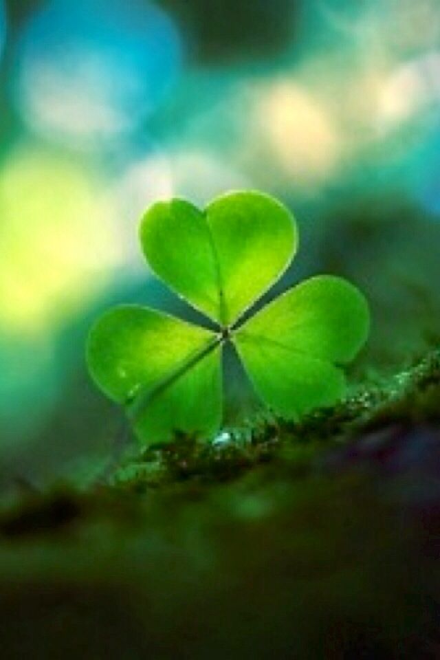 iPhone Wallpaper St. Patrick's Day tjn Nature