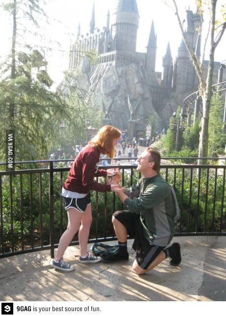 Proposal At The Wizarding World Of Harry Potter Ring S In A Handmade Snitch Yes