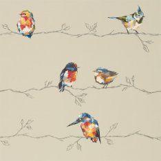 Обои Harlequin Standing Ovation 111486 | Обои с птицами ...