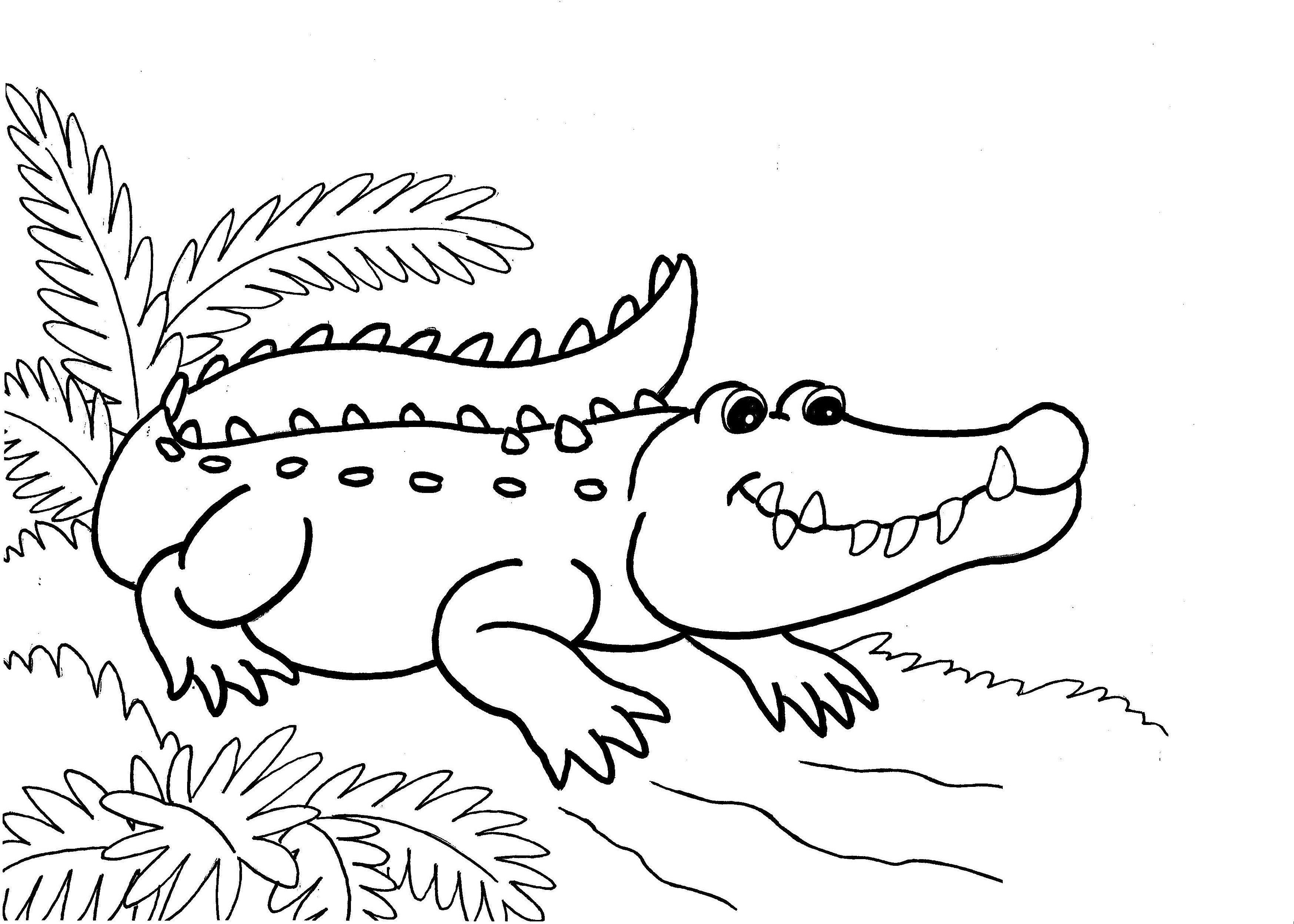 Crocodiles Looking Eating Coloring Pages For Kids Bxw Printable Crocodiles Coloring Pages For Kids Buku Mewarnai Warna Gambar