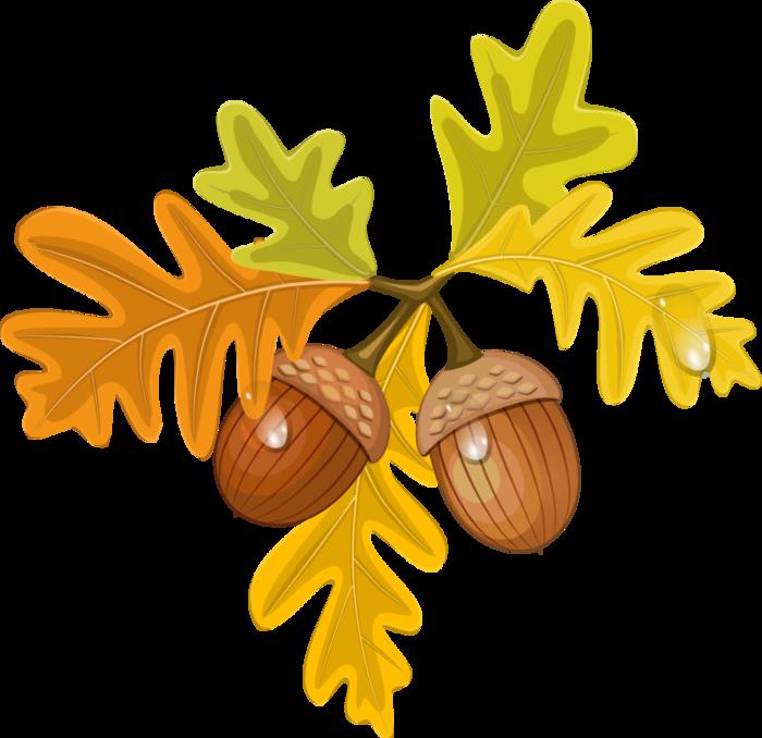 ᐈ Листья деревьев клипарт вектор, векторные картинки клипарт ... | 678x700