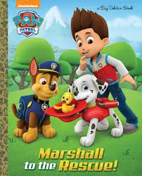 Image result for paw patrol story books