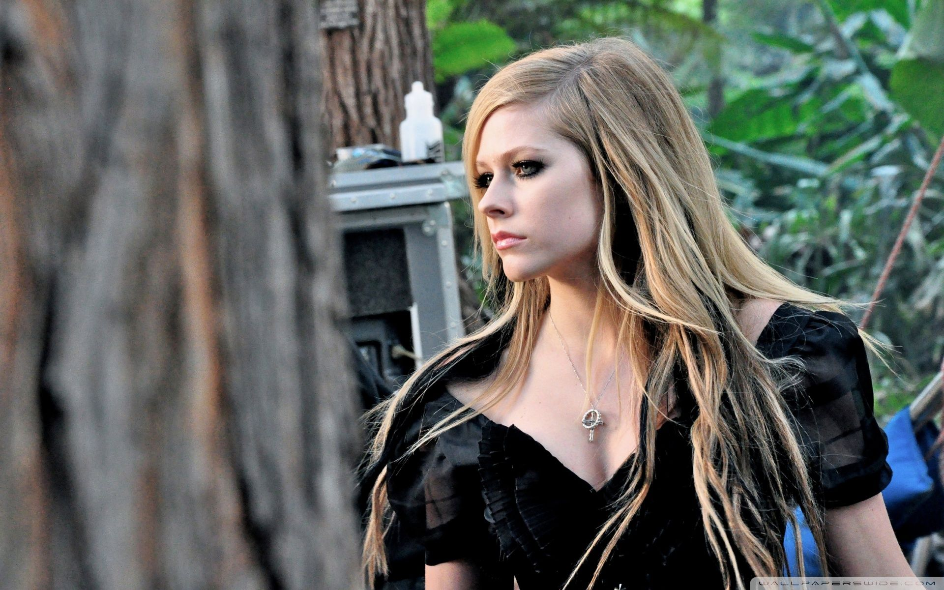best images about Avril Lavigne on Pinterest The best damn
