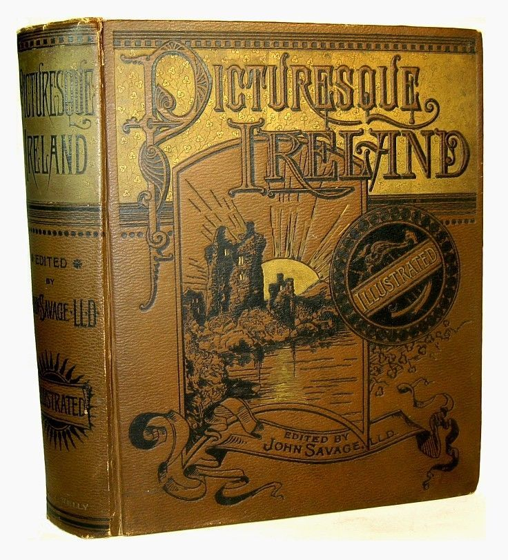 1884 PICTURESQUE IRELAND Illustrated IRISH Celtic DUBLIN