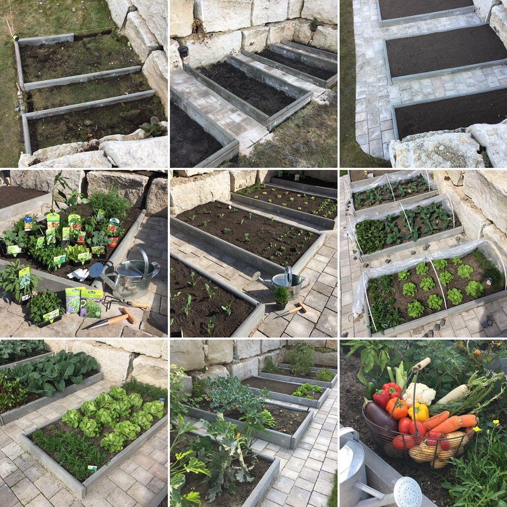 Gemüsebeete Im Garten Anlegen, Bepflanzen