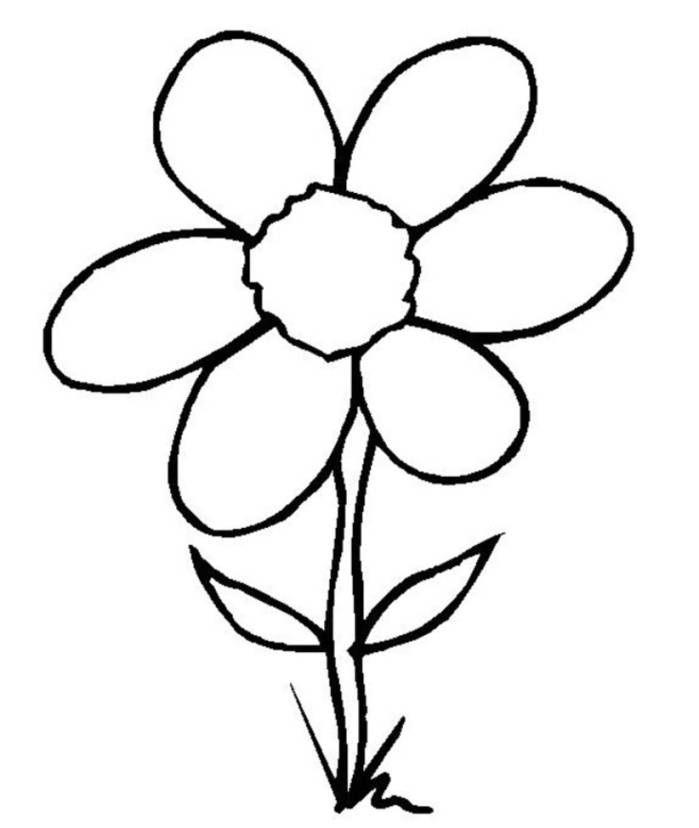 Easy Flower Image - ClipArt Best | Bunga, Drawings, Art