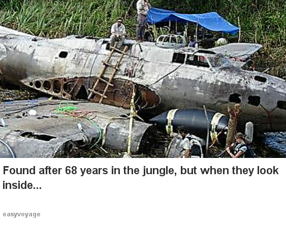 Man finds plane hidden in the jungle, but when he looks inside