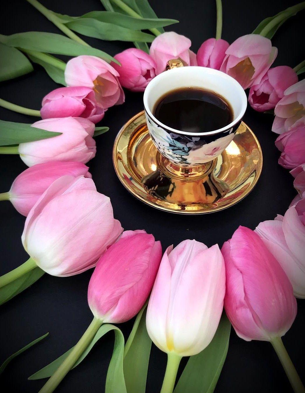 энгри красивые фото цветов доброго утра оформить подобрать