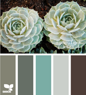 {succulent hues} by design-seeds.com - natural and cool earth tones. I like these colors for my office :)