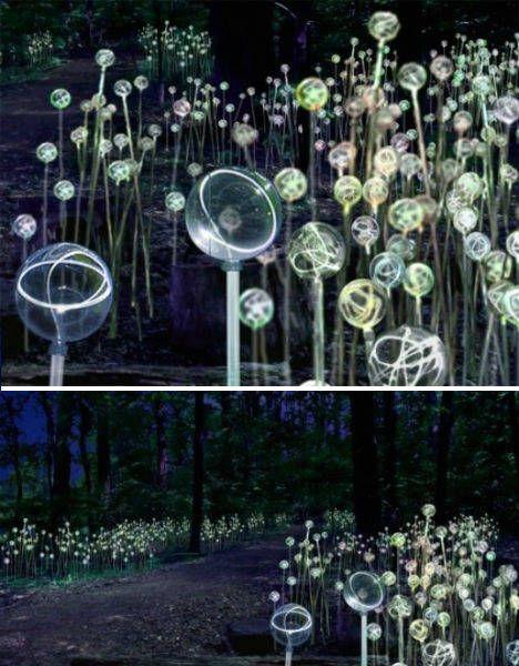 Field of Light Luci a LED che compongono bellissime installazioni
