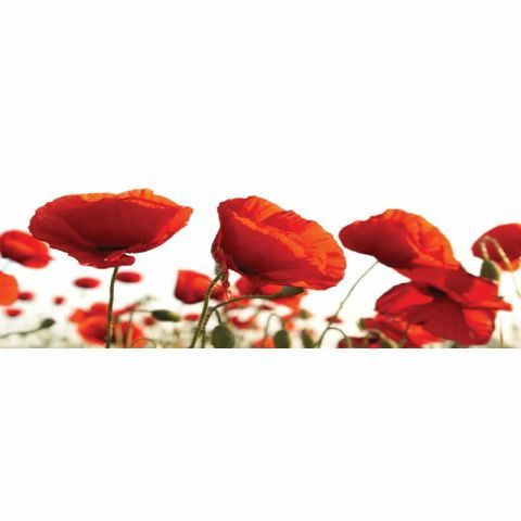 Red Poppies Glass Art W40 x H120 cm - Casafina