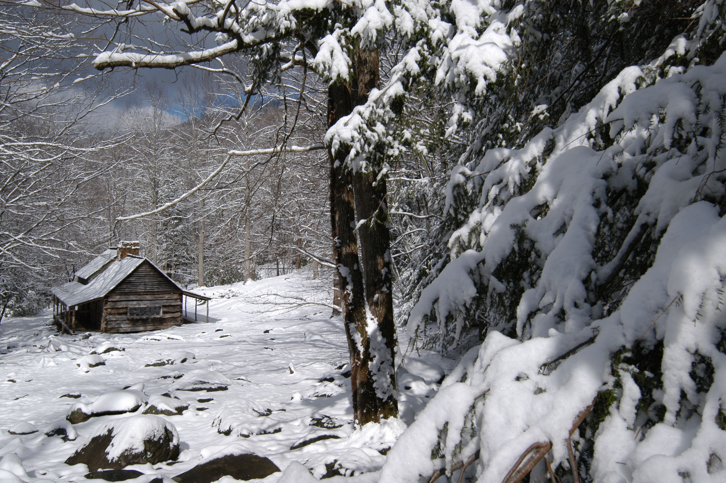 Beautiful winter scene in the Smoky Mountains
