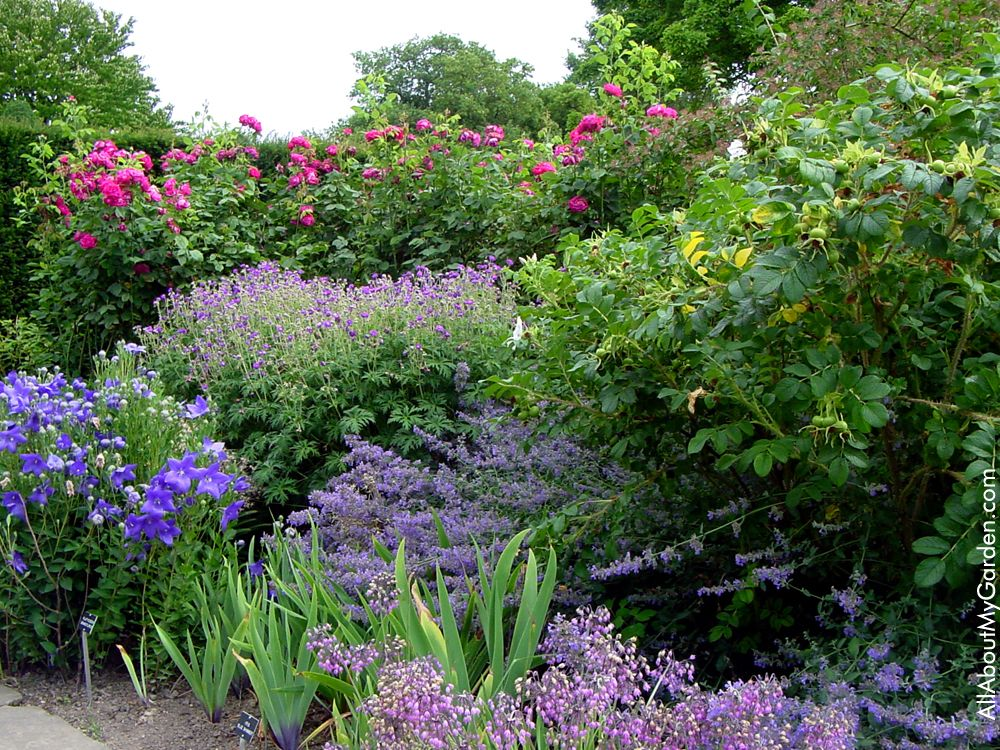 Sissinghurst Castle Garden Gardens to visit Pinterest
