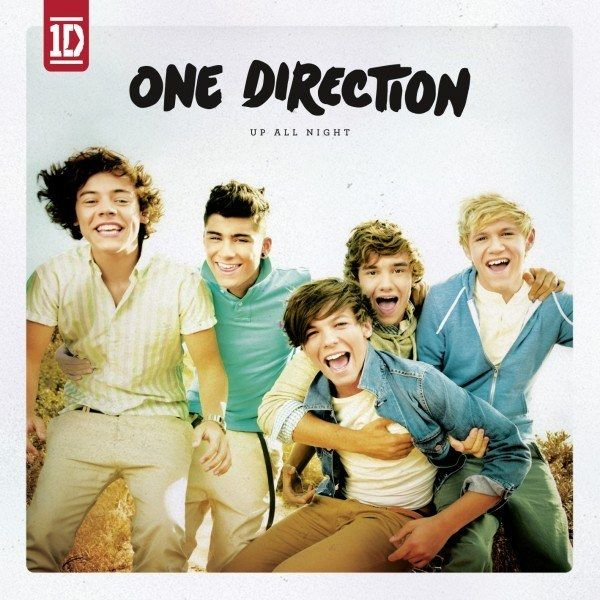 Maxi Poster 61cm x 91.5cm Take Me Home new /& sealed One Direction