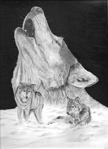 Pin von Elisabeth Hinze auf Wölfe | Pinterest | Wolf und Tier