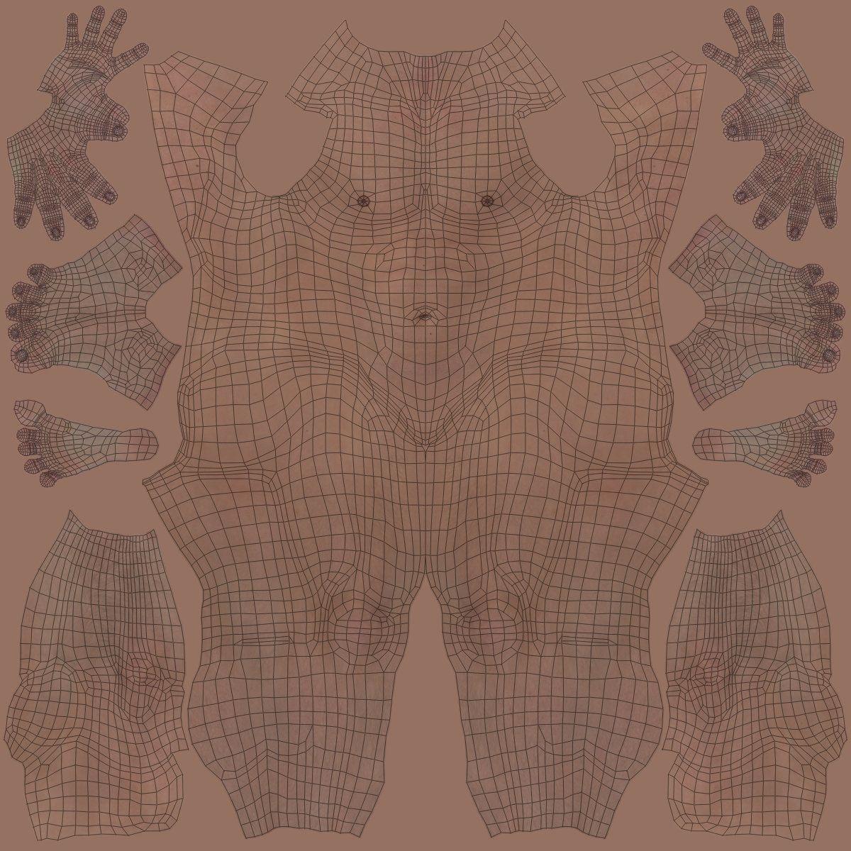 body texture 3d - HD1200×1200