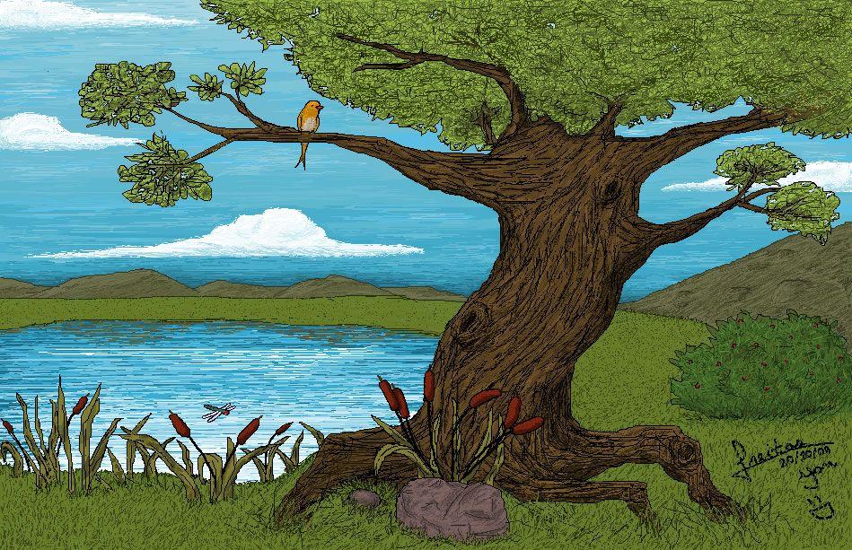 desenhos de lagos   Pássaros , Paisagem , Lago, Bonito , Flores , Paisagem , Landscape ...