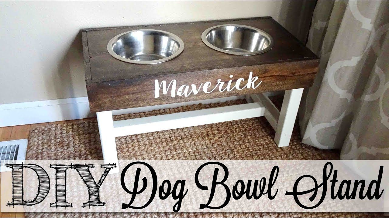 Diy Dog Bowl Stand Youtube Dog Bowl Stand Dog Bowls