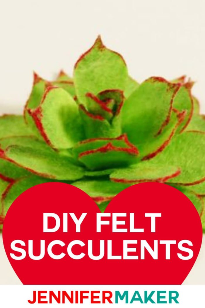 Download Felt Succulents: Easy to Make and Won't Die On You ...