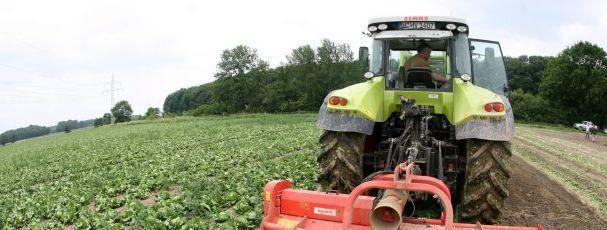 Secretário do Ambiente madeirense contra lei que obriga agricultores a coletarem-se