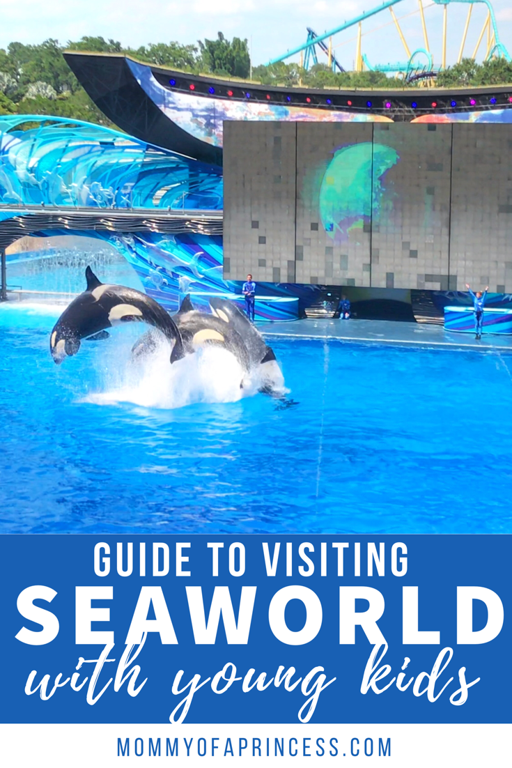 7 Can T Miss Tips When Visiting Seaworld Orlando For Toddlers Sea World Orlando Travel Seaworld Orlando