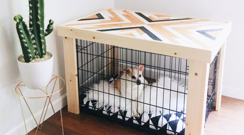 Pet Crate Options That Are Totally Display Worthy Dog Crate Pet Crate Pet Crate Furniture