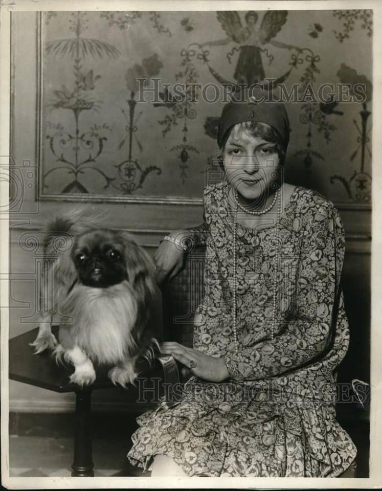 pekingese royalty | Vintage Pekingese Dog Photo's