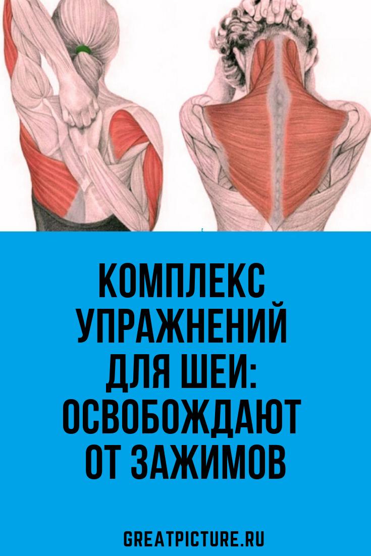 Комплекс упражнений для шеи: Освобождают от зажимов ...