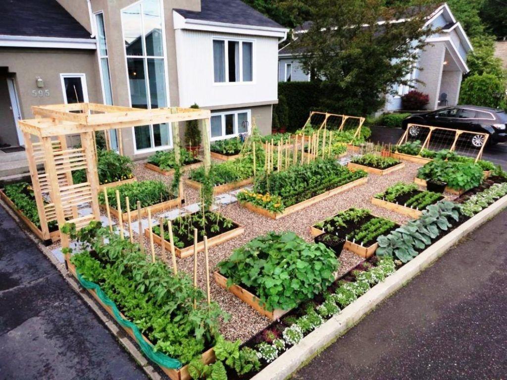 garden ideas:backyard designs growing vegetables in florida florida