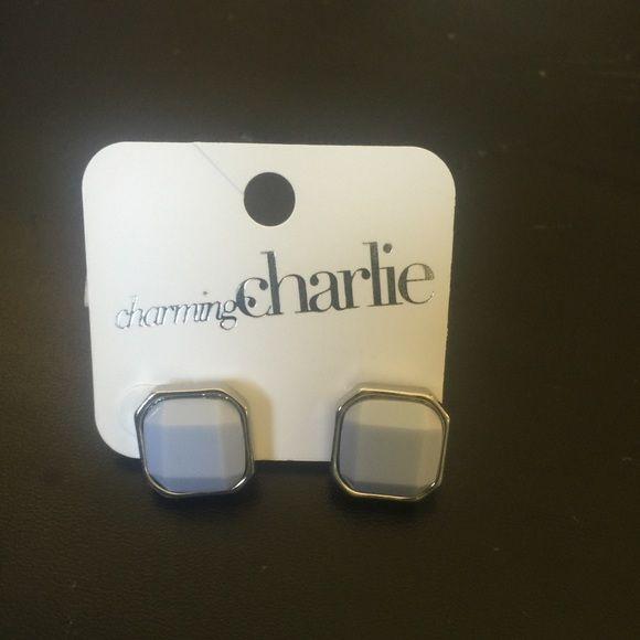 Charming Charlie earrings Cute studs! Charming Charlie Jewelry Earrings