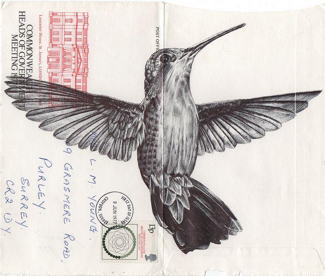 Birds Illustrated On Vintage Envelopes By Mark Powell Paper Illustration Biro DrawingHummingbird TattooEnvelopesEnvelope