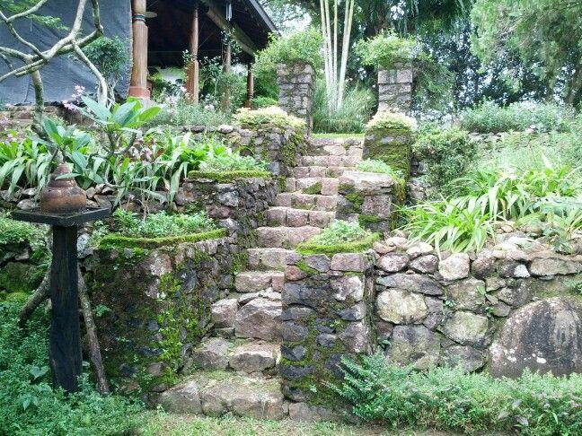 Stairs in Villa Canelle, Sri Lanka | Garden view, Garden ...