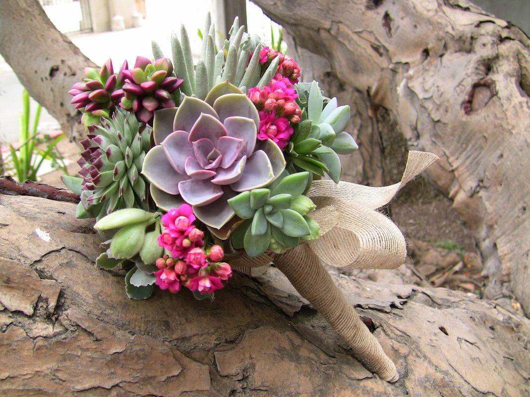 ramo de cactus carnosos