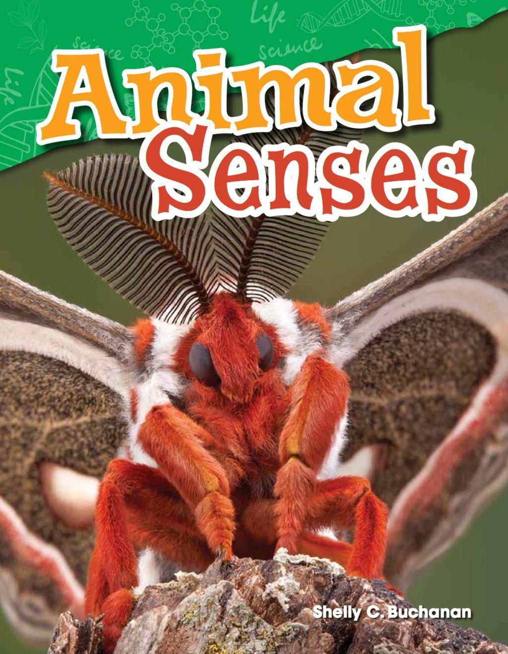 Animal Senses Ebook