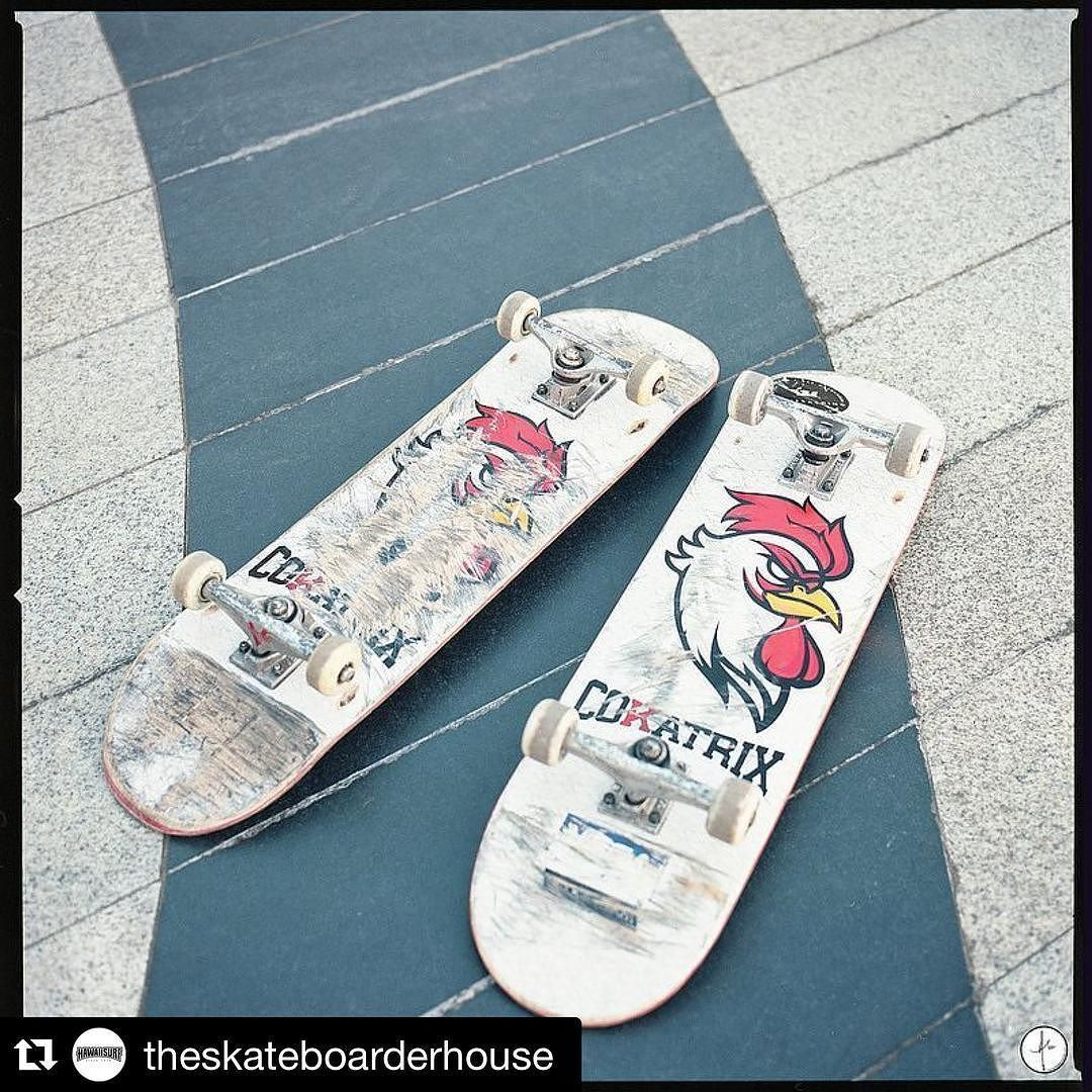Repost @theskateboarderhouse brand new @cokatrixskateboards disponible au shop et sur le site Hawaiisurf.com #skateboard #skate #skateboarding #shop #paris #new #tbt