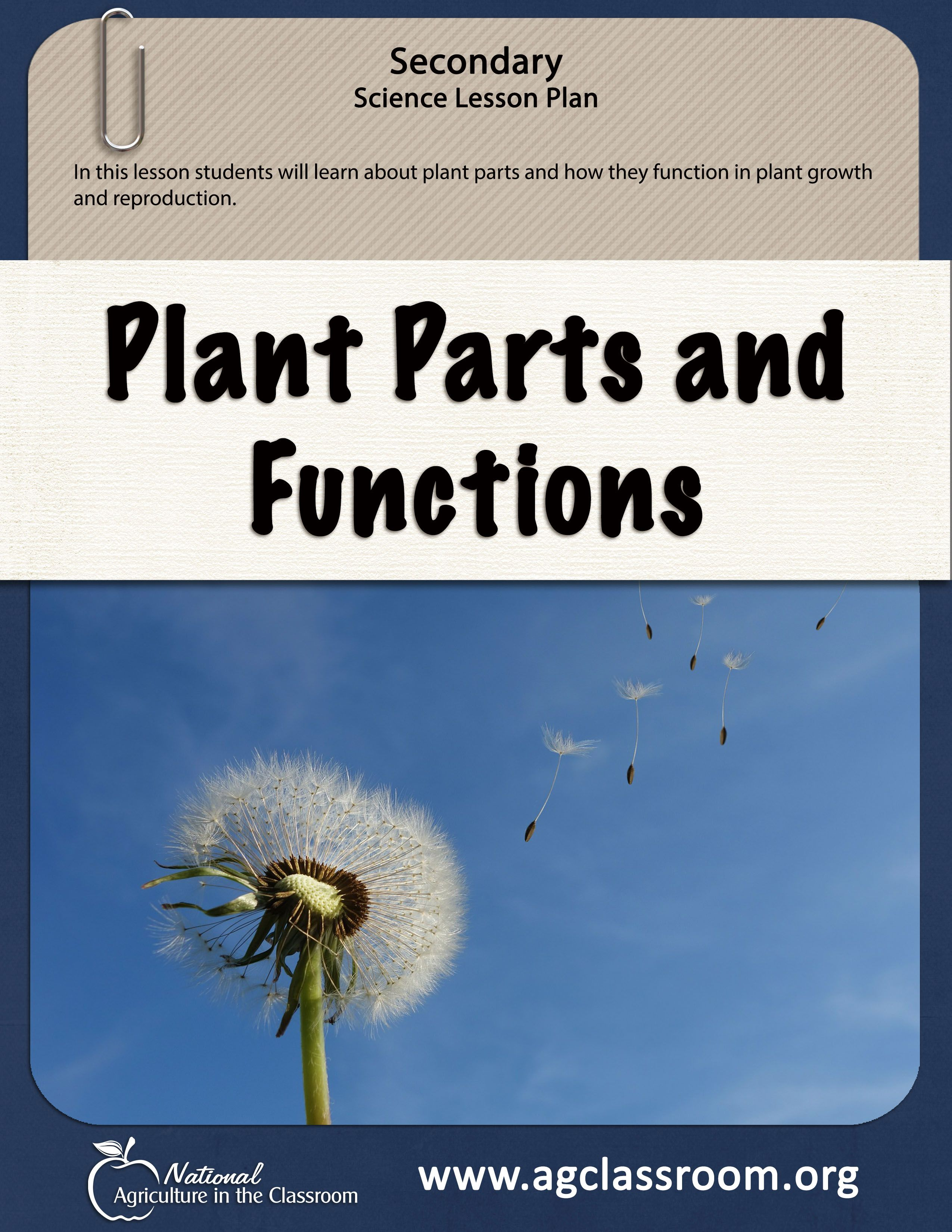 In This Lesson Students Will Learn About Plant Parts And