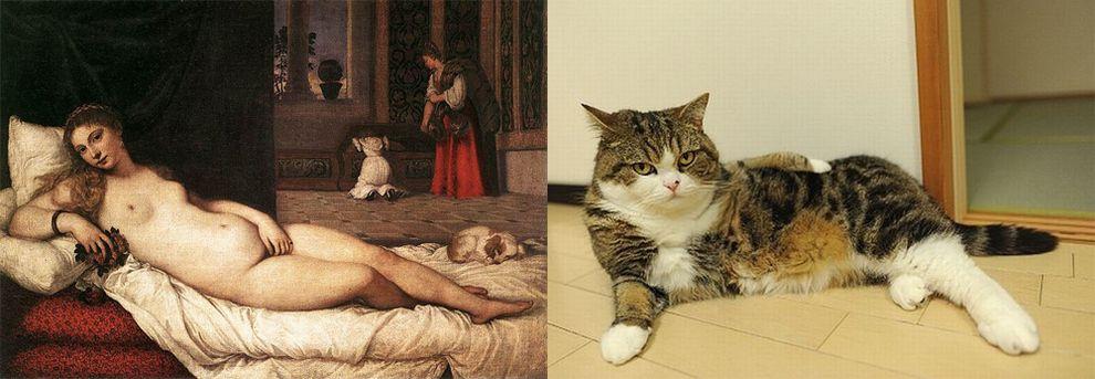 21 Cats Imitating Art | Venus and Cat
