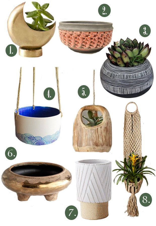 Planters that we love at The Jungalow