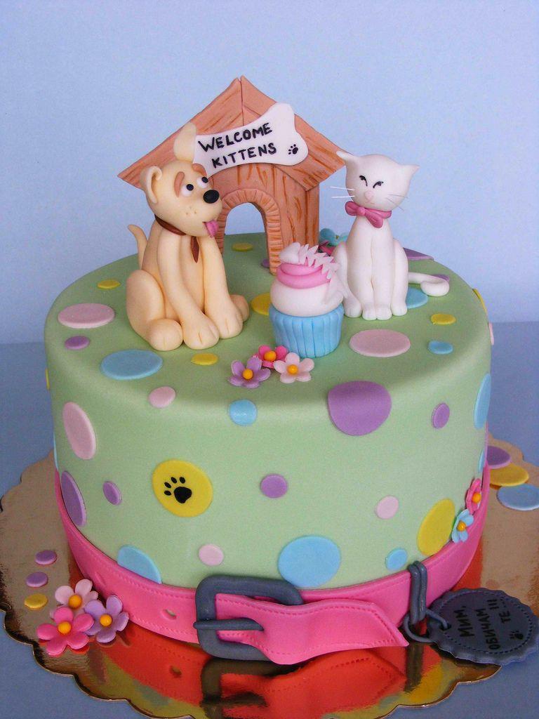 Cat And Dog Cake Cat Cake Dog Cakes Dog Cake