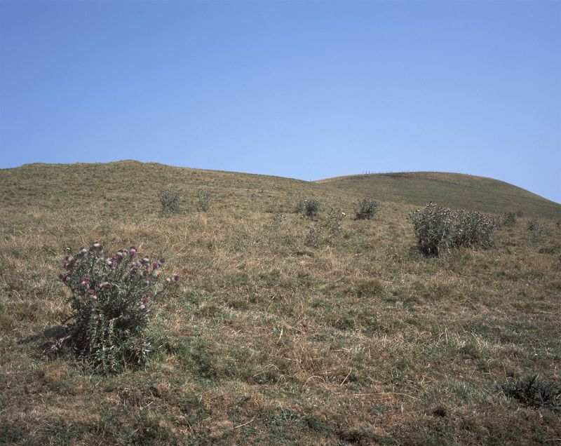 August 6th, 2003. Paul and Gilles on a Hill. La Godivelle, Auvergne,... - David Claerbout