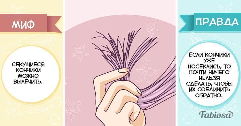 Рубрика :Миф и Правда о волосах! Каждому на заметку! #love #shampoo #шампунь #шампуньдляволос #парикмахеромск #стилистомск #салонкрасотыомск #омск #омск55# #летоомск #лето2020# #волосы #окрашивание #окрашиваниеволос #окрашиваниеомск #девочкитакиедевочки #спрейдляволос #лето2020# #омсклето #летоомск#стрижка#стрижкаомск#блонд#шатуш#растяжкацвнта#блондомск#airtoucheомск#airtouch#окрашиваниеволосомск#любисебя