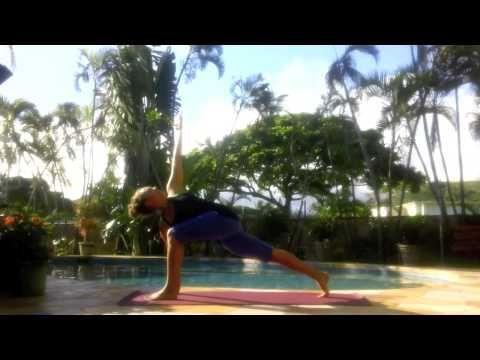 pinmichael seals on adopt  vinyasa yoga yoga guide