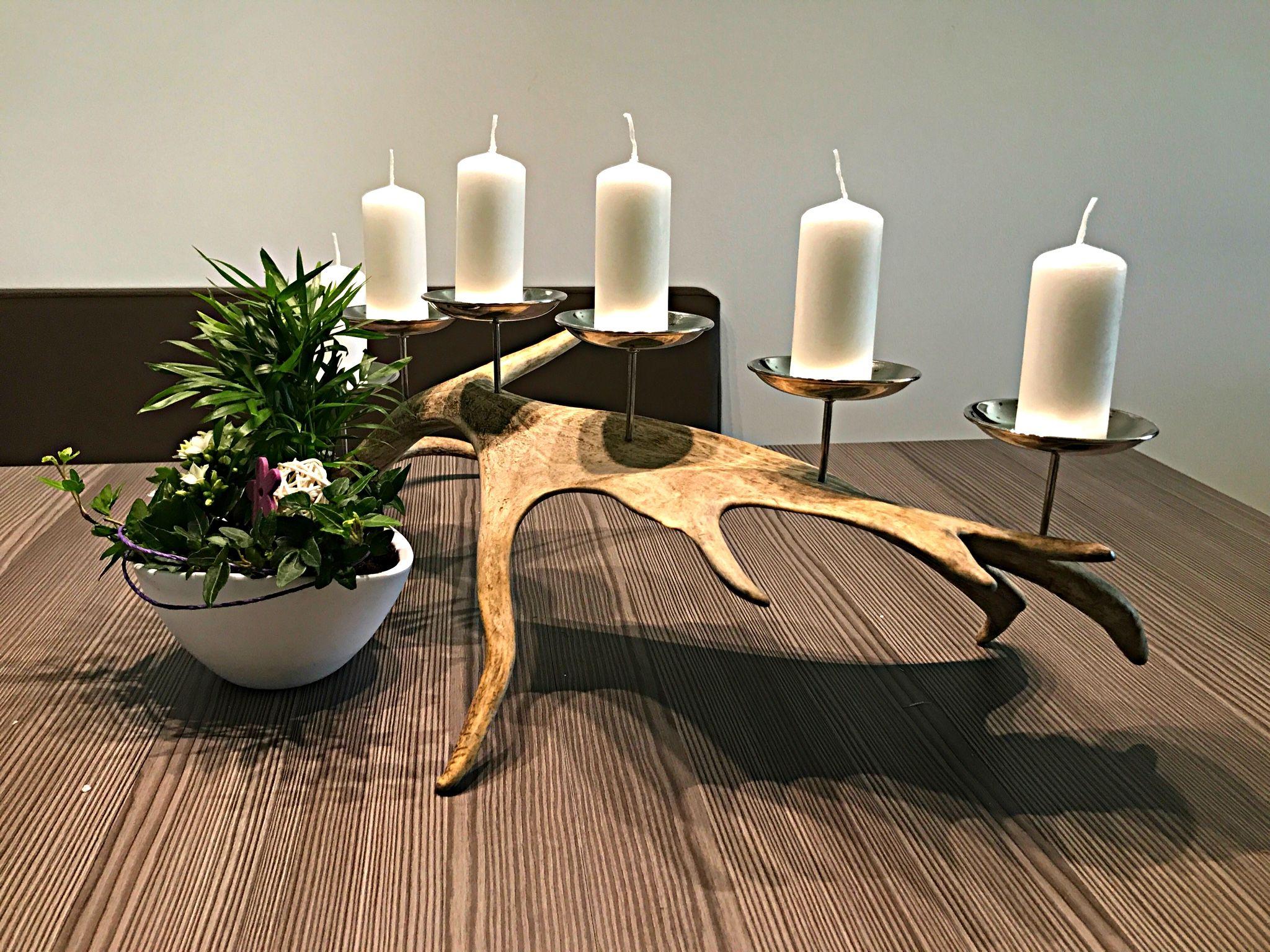 Kerzenhalter silber aus einer damhirsch abwurfstange hirschgeweih deko chalet alpin - Dekoration hirschgeweih ...